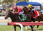 February 29, 2020: #12 Vitalogy with jockey Javier Castellano on board, wins the Palm Beach Stakes G3 on February 29th, 2020 at Gulfstream Park in Hallandale Beach, Florida. LizLamont/Eclipse Sportswire/CSM