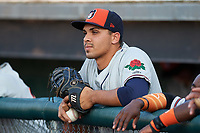 Connecticut Tigers first baseman Reynaldo Rivera (44) in the dugout before a game against the Auburn Doubledays on August 10, 2017 at Falcon Park in Auburn, New York.  Connecticut defeated Auburn 4-1.  (Mike Janes/Four Seam Images)