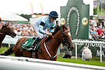 18 August 2010: APPROVE and Eddie Ahern gallop out after wining the Irish Thoroughbred Marketing Gimcrack Group 2 Stakes.