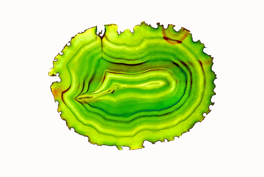 A brilliant high key image of a colorful slab of agate.