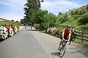 A wine tasting tour in Glen Ellen, Cailf. On Sunday, May 16, 2010. Karie Henderson © 2010