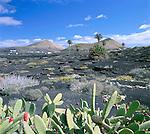 Spain, Canary Island, Lanzarote, La Geria: Volcanic Landscape | Spanien, Kanarische Inseln, Lanzarote, La Geria: Vulkanlandschaft