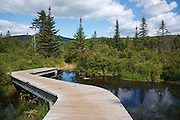 Footbridge along Zealand Trail near Zealand Pond in the White Mountains, New Hampshire USA during the summer months. This bridge has since been replaced with a new one.