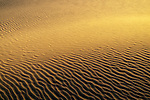 The golden hour illuminates the sand of the Stockton Beach sand dunes in Port Stephens in NSW, Australia