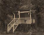 Mango Cottage<br /> Cyanotype + Coffee toning