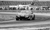 #65 Ferrari 365 of John Morton and Tony Adamowicz, 2nd place,  24 Hours of Daytona, Daytona International Speedway, Daytona Beach, FL, February 1979. (Photo by Brian Cleary/bcpix.com)