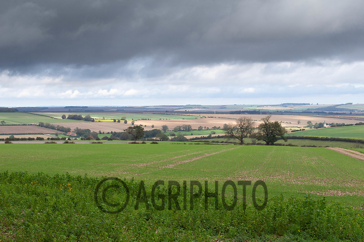 6.10.2020 Farming landscape on the Yorkshire Wolds<br /> ©Tim Scrivener Photographer 07850 303986<br />      ....Covering Agriculture In The
