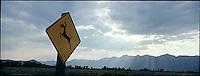 Red nosed deer crossing sign<br />