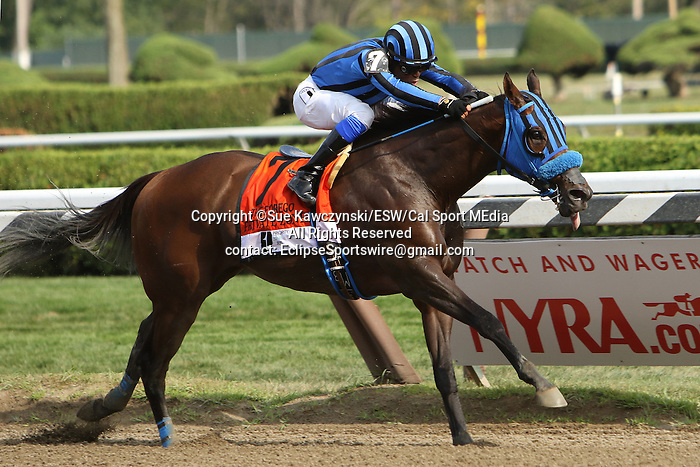 August 29 2015: Private Zone with Martin Pedroza win the $700,000 Grade I Forego Stakes for 3-year olds & up going 7 furlongs at Saratoga Racetrack.  Trainer Jorge Navaro. Owner Good Friends Stable. Sue Kawczynski/ESW/CSM