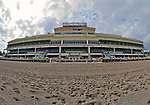 11 February 05: Nothing says Florida racing more than sun, palm trees, water, colorful flowers and high rise condominiums - they were all on display at Gulfstream Park in Hallandale Beach, Florida on Donn Handicap Day.  (Bob Mayberger/Eclipse Sportswire)
