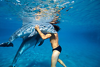 Dolphin trainer hugs Bottlenose Dolphins, Tursiops truncatus, demonstrating affection between trainer and dolphins, Dolphin Reef, Eilat, Israel, Red Sea.