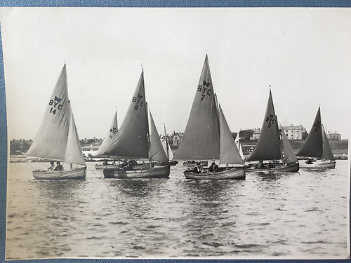 Ballyholme Yacht Club's Insect class