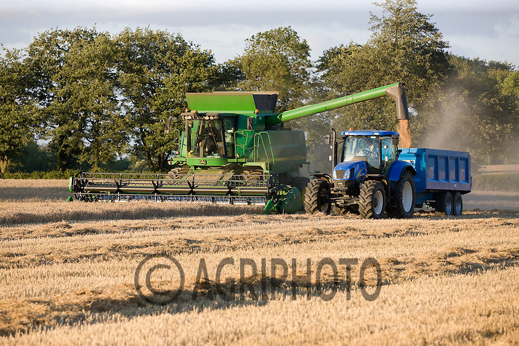 Harvesting Wheat in the late evening light in Lincolnshire.Picture Tim Scrivener date taken 9th August  2011 .mobile 07850 303986 e-mail tim@agriphoto.com.....covering Agriculture in The United Kingdom.....
