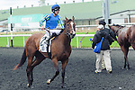 Green Doctor(2) with Jockey Jesse M. Campbell aboard after the Natalma Stakes at Woodbine Race Course in Toronto, Canada on September 13, 2014 with Jockey Patrick Husbands aboard.