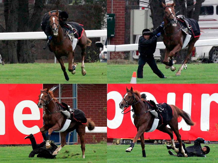 Crash of Carte Diamon, as the jockey falls after the saddle slip