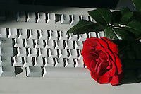 Amore in internet. Love on the Internet....