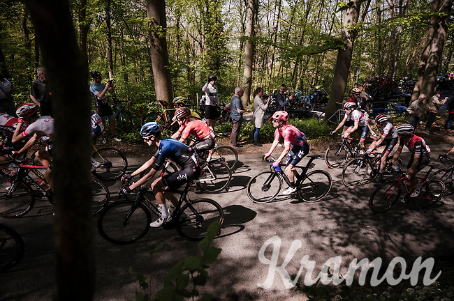 Simon Clarke (AUS/EF Education First) catching some sun in the forest<br /> <br /> 83rd La Flèche Wallonne 2019 (1.UWT)<br /> One day race from Ans to Mur de Huy (BEL/195km)<br /> <br /> ©kramon