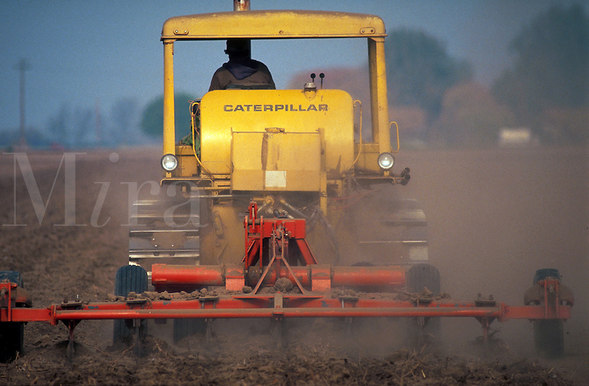 Planting cotton. California.