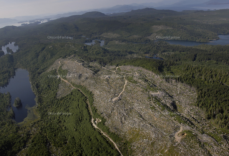 A clear cut on a ridge top on Prince of Wales, a heavily logged  island.  Present day logging is done on Native Corporation and Forest Service land.Anissa Berry-Fitch and John Schoen load up equipment before beginning a flight over Prince of Wales and other neighboring islands.  She flies for Lighthawk.  He is a biologist with Audubon who is taking collected data analyzed by computer to now visually check which forested land might be the highest quality of big trees and wildlife habitat. He has a check list for what has been logged and the forest condition and makes notes as to what is good deer, bear and bird habitat making a healthy ecosystem where the forest will continue to thrive.  Nature Conservancy did GIS mapping. They will release their report in spring of 2006 identifying which pieces of land are highest on their list to be protected. The flight began over south Prince of Wales and worked toward Dall Island.