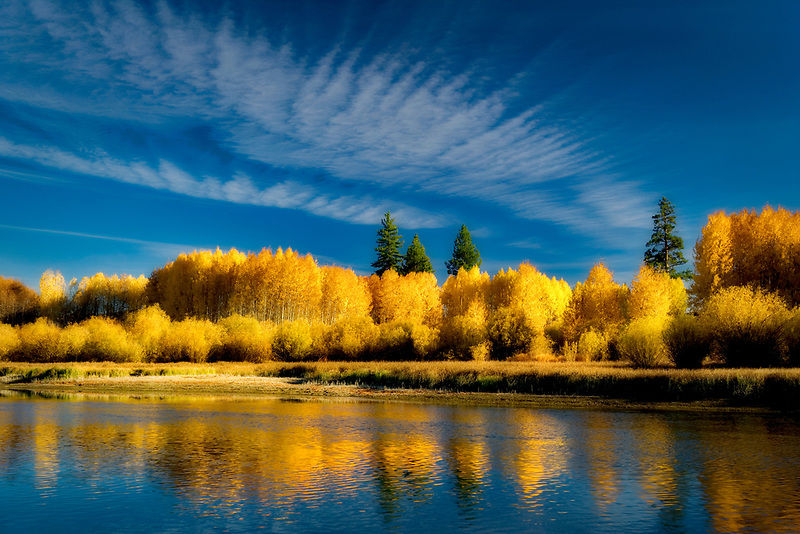 Fall colored aspenn trees and Deschutes River. Central Oregon