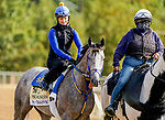 October 1, 2020: NY Traffic exercises as horses prepare for the Preakness Stakes Week races at Pimlico Race Course in Baltimore, Maryland. Scott Serio/Eclipse Sportswire/CSM