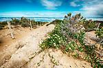 Southern Ocean, Goolwa, South Australia