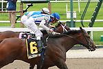 2011 05 14: Alternation with Ramon Dominguez win the Grade 2 Peter Pan Stakes for 3 year olds at 1 1/8 mile, Belmont Park. Trainer Donnie Von Hemel. Owner Pin Oak Stable