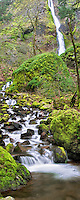 Starvation Creek Falls with mossy rocks. Columbia River Gorge National Scenic Area, Oregon