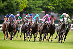 ELMONT, NY - JUNE 11: The field exits the fourth turn during the Jaipur Invitational Stakes on Belmont Stakes Day before the 148th Belmont Stakes on June 11, 2016 in Elmont, New York. (Photo by Douglas DeFelice/Eclipse Sportswire/Getty Images)
