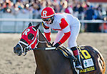 March 29, 2014: Vicar's In Trouble (red cap), ridden by Rosie Napravnik, leads the way in a wire-to-wire win in the Louisiana Derby on Louisiana Derby Day at the Fairgrounds Race Course in New Orleans, LA. Scott Serio/ESW/CSM