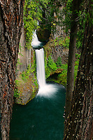 Toketee Falls in the Umpqua National Forest, Orego