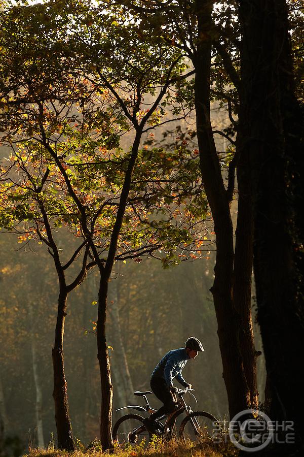 Sam Behr  riding Marin mountain bike  Surrey  , November 2011 pic copyright Steve Behr / Stockfile