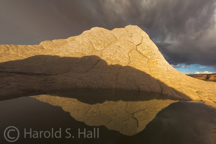 White Pocket in the Vermilion Cliffs of Northern Arizona has become a favorite photography place of refuge for me.  I'll only travel here after a rain storm.  The approaching storm or clearing offers the best opportunities for photographs.  The setting sun illuminates one of the many brain rock hills in White Pocket in a golden glow.