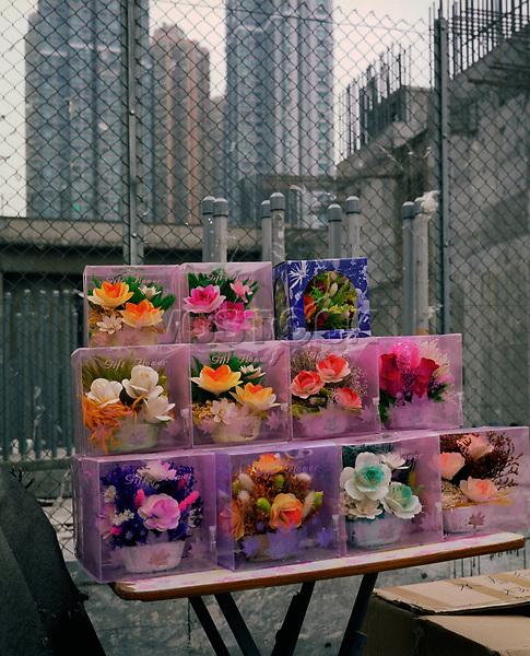 Flora, Zierblumen, Wolkenkratzer, Hongkong, China, 2003, Hong Kong Flora<br />  ***Keine Social_Media Nutzung***<br /> <br /> Engl.: Asia, China, Hong Kong, urban flora, plant, plastic flowers, skyscrapers<br /> ***No social media use***