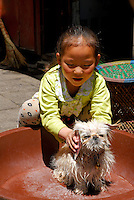 A young Tibetan girl brushes her recently bathed lap dog, outside her home in the Barkhor area of Lhasa, Tibet.