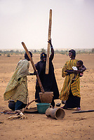 Near Bankilare, southwestern Niger.   Bella Women Pounding Millet.  The Bella, now legally free,  are the traditional slaves of the Tuareg.