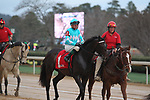 HOT SPRINGS, AR - FEBRUARY 19: My Boy Jack #1, with jockey Kent Desormeaux aboard before the running of the Southwest Stakes at Oaklawn Park on February 19, 2018 in Hot Springs, Arkansas. (Photo by Justin Manning/Eclipse Sportswire/Getty Images)