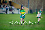 Liz Houlihan of Kerry in action against Meath in the Camogie Intermediate Championship