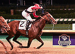 Louisville, KY - June 18: #2 Bradester wins the Stephen Foster at Churchill Downs on June 18, 2016 in Louisville, Kentucky. (Photo by Jessica Morgan/Eclipse Sportswire/Getty Images)