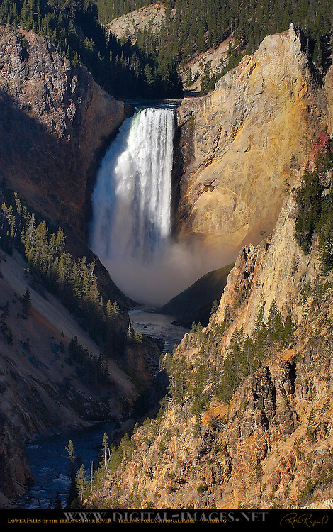 Lower Falls in Autumn, Grand Canyon of the Yellowstone River, Yellowstone National Park, Wyoming