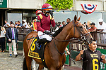 JULY 10, 2021: Hard Love post parade in the Gr.1 Belmont Derby Invitational Stakes, going 1 1/4 mile on the turf, at Belmont Park in Elmont, New York. Sue Kawczynski/Eclipse Sportswire/CSM