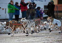A dog team speeds down Fourth Avenue at the ceremonial start of the 43rd Iditarod dog sled race in downtown Anchorage. 79 mushers made their way 11 miles through the slushy streets of Anchorage in unseasonably warm weather and early rain. This year's official re-start will begin in Fairbanks because of poor trail conditions in Southcentral Alaska.