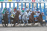 Birdrun with Rajiv Maragh win the 123rd running of the Graded 2 Brooklyn Handicap for 3 year olds & up, at 1 1/2 miles, at Belmont Parlk.