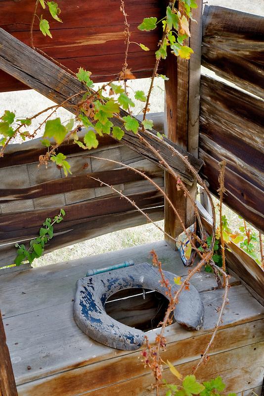 Overgrown outhouse. Nevada City, Montana