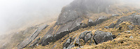 Large rock formations and alpine tussock country in fog, Westland Tai Poutini National Park, UNESCO World Heritage Area, West Coast, New Zealand, NZ