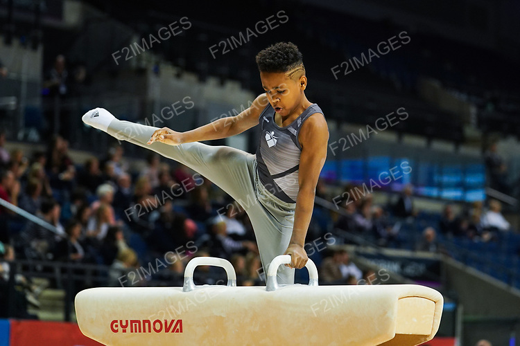 British Championships 2019. Friday Men's under 14. & WAG Junior all-around