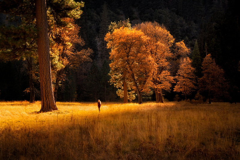 Girl stands alone in meadow. Yosemite National Park, CA