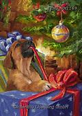 Marcello, CHRISTMAS ANIMALS, WEIHNACHTEN TIERE, NAVIDAD ANIMALES, paintings+++++,ITMCXM1169,#xa#