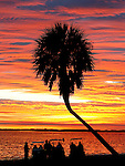 Residents watch the sunset from their golf carts at Shell Point in coastal Wakulla County south of Tallahassee, Florida.    (Mark Wallheiser/TallahasseeStock.com)