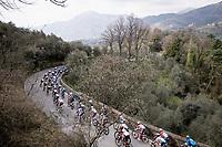 the peloton<br /> <br /> Stage 1 from Lido di Camaiore to Lido di Camaiore (156km)<br /> <br /> 56th Tirreno-Adriatico 2021 (2.UWT) <br /> <br /> ©kramon